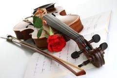 Rose de rouge de Valentine Photo libre de droits