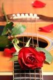 Rose de rouge de Valentine Photos libres de droits