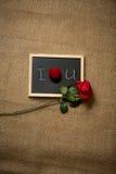 Rose de rouge et anneau de mariage se trouvant sur la déclaration de l'amour Images libres de droits