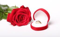 Rose de rouge et boucle d'or Image libre de droits