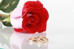 Rose de rouge et boucle de mariage Image stock