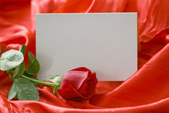 Rose de rouge et carte d'invitation Images stock