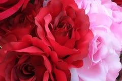 Rose de rouge et de rose Image stock