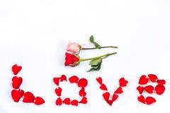 Rose de rouge et de rose et l'AMOUR de Word écrit Images libres de droits