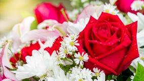 Rose de rouge et fleurs blanches dans le bouquet Image libre de droits