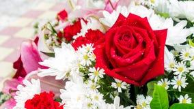 Rose de rouge et fleurs blanches dans le bouquet Photographie stock libre de droits