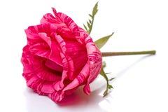 Rose de rouge foncé sur la table Image libre de droits
