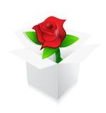 Rose de rouge présente à l'intérieur d'une conception d'illustration de boîte illustration de vecteur