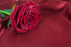 Rose de rouge sur la soie Photographie stock libre de droits
