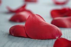 Rose de rouge sur la table en bois bleue avec la carte de papier de cadeau et du 8 mars Photo stock
