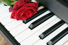 Rose de rouge sur le clavier de piano Concept de chanson d'amour, musique romantique Photographie stock libre de droits