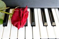 Rose de rouge sur le clavier de piano Concept de chanson d'amour, musique romantique Photo stock