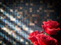 rose de rouge sur le fond décoratif carrelé de mur Image libre de droits