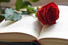 Rose de rouge sur le livre ouvert Photos libres de droits