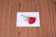 Rose de rouge sur le papier de message Image stock