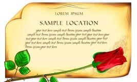 Rose de rouge sur le vieux fond de papier Photo stock