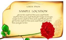 Rose de rouge sur le vieux fond de papier Photographie stock