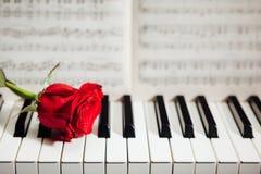Rose de rouge sur les clés de piano et le cahier de musique Photos libres de droits