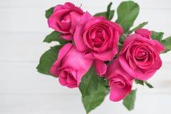Rose de rose sur le fond en bois de hite Photo libre de droits