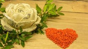 Rose de terre cuite Photographie stock