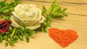 Rose de terre cuite Photos stock