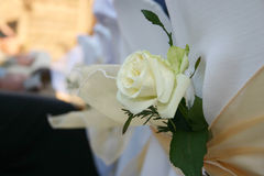 Rose decoration. White rose decoration on a wedding chair cover royalty free stock photo