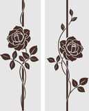 Rose decorative Stock Photography