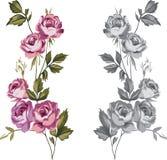 Rose decorative royalty illustrazione gratis