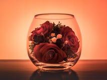 Rose dei fiori in un vuoto fotografia stock libera da diritti