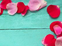 Rose dei petali su fondo di legno, giorno di biglietti di S. Valentino fotografia stock