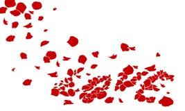 Rose del amor Ilustración del Vector