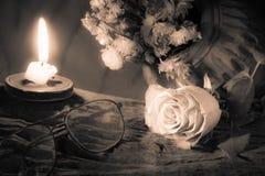 Rose del amor Imagenes de archivo