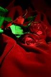 Rose del biglietto di S. Valentino fotografia stock libera da diritti