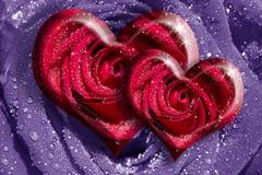 Rose del cuore fotografie stock libere da diritti