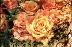 Rose dell'arancio di Grunge Fotografia Stock Libera da Diritti