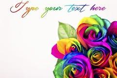 Rose dell'arcobaleno sui mattoni bianchi e sul fondo di legno Cartolina per il giorno del ` s del biglietto di S. Valentino e del Fotografia Stock Libera da Diritti