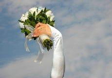 Rose della sposa Immagini Stock Libere da Diritti
