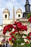 Rose an den Spanischjobsteps in Rom stockbilder