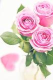 Rose dentellare Fotografia Stock Libera da Diritti