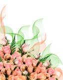 Rose dentellare luminose Fotografie Stock Libere da Diritti