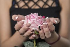 Rose in der Hand lizenzfreies stockfoto