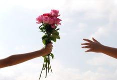 Rose in der Hand Stockfoto