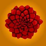 Rose der Wüste Lizenzfreies Stockfoto