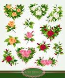Rose design set. Beautiful classic rose design elements set Royalty Free Stock Photo
