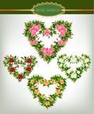 Rose design set Stock Photo
