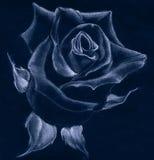 Rose - dessin en pastel Photos stock