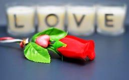 Rose devant des bougies d'amour avec le bokeh photographie stock libre de droits