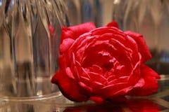 Rose devant les verres de vin à l'envers Photo stock