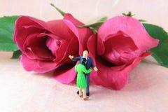 rose di amore Fotografie Stock