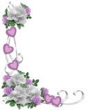 Rose di bianco del bordo dell'invito di cerimonia nuziale Fotografie Stock Libere da Diritti